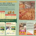 poultry-and-pig-breeding-page-1-low-res